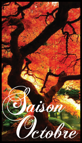 The Saison Octobre Label